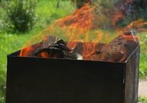 Вблизи столичных парков могут запретить продажу мангалов и углей