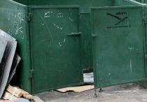 Мытищи — первые по раздельному сбору мусора